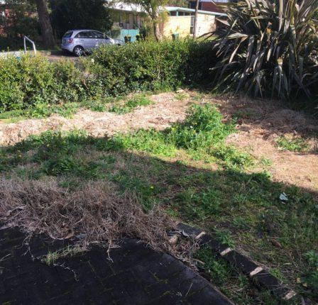 Appleseed Gardening Epping 037